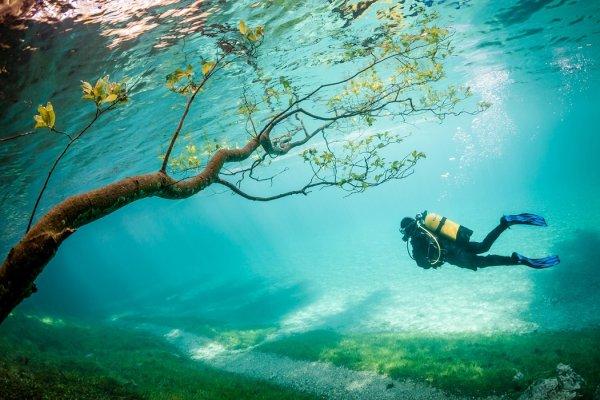 смотреть National Geographic