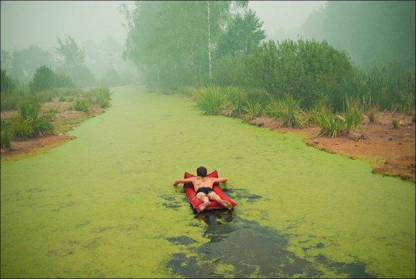 Удачные кадры - Нет в мире надежней оплота, чем наше родное болото! © Роман Мокров