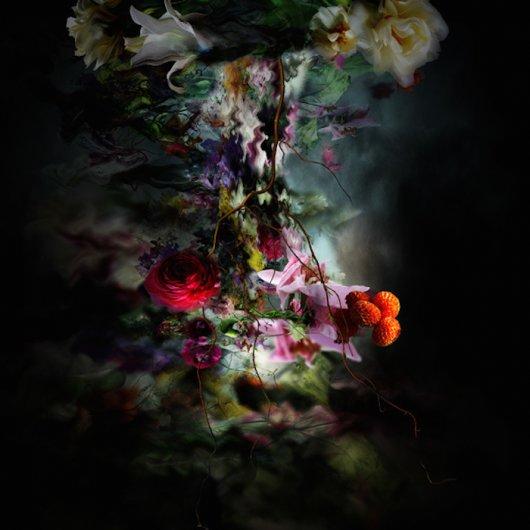 фото ярких цветов