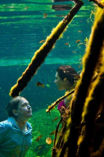 Под водой 3