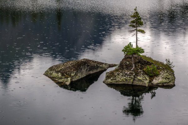 Чудо-Остров. Дождь.