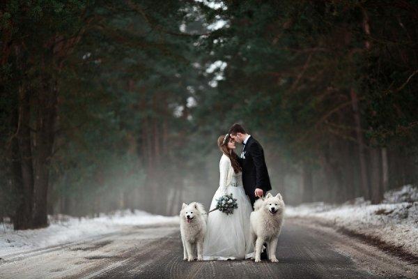 идеи свадебных фотографий - © Ольга Ильина