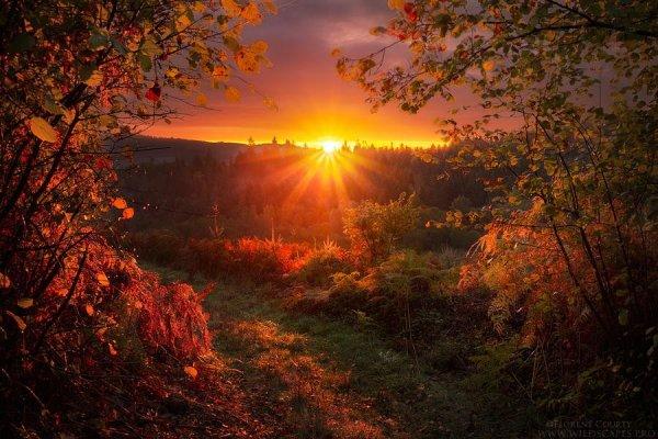 рассвет и закат солнца