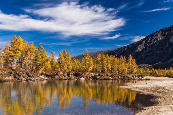 фото пейзажи природы