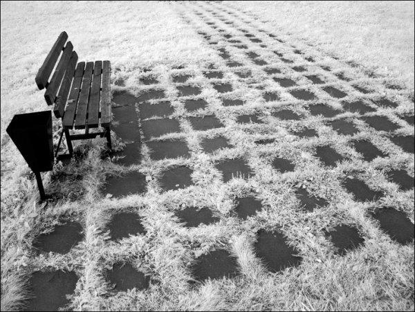 """Фотограф Дмитрий Зверев (рубрика """"Вдохновение"""") - №15"""
