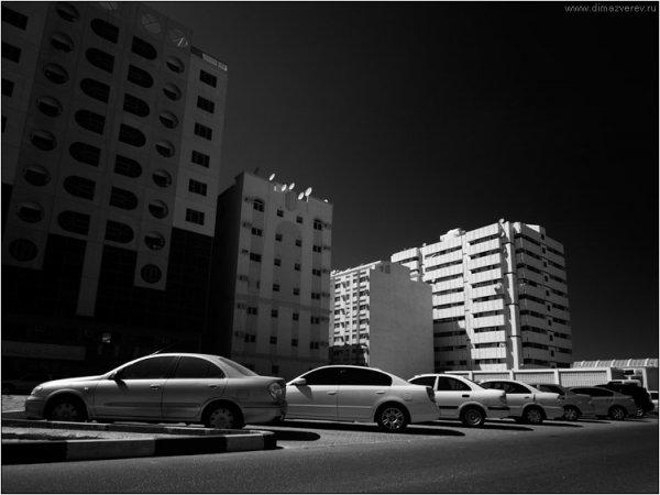 """Фотограф Дмитрий Зверев (рубрика """"Вдохновение"""") - №50"""