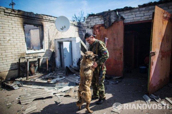 Памяти фотокорреспондента Андрея Стенина... - №24