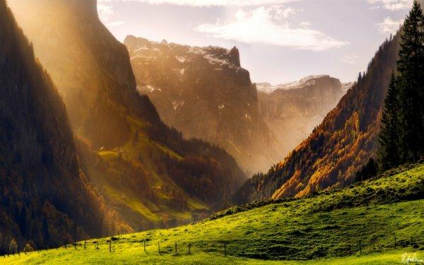 Удивительная природа