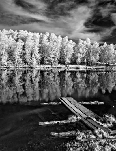 "Фотограф Георгий Розов (рубрика ""Диалоги"") - №18"