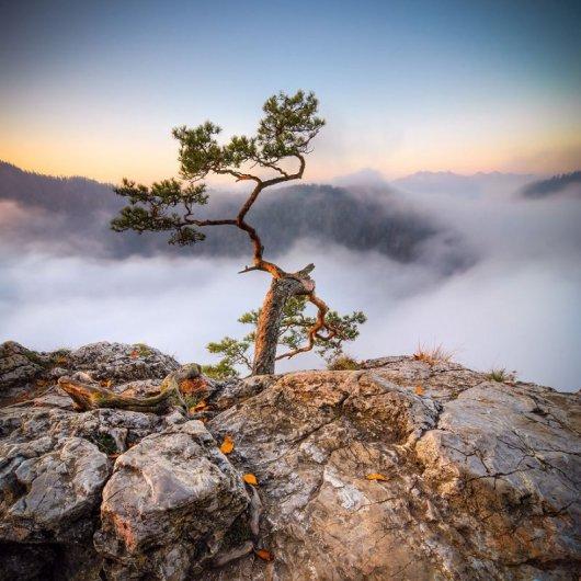 фото красивые горы