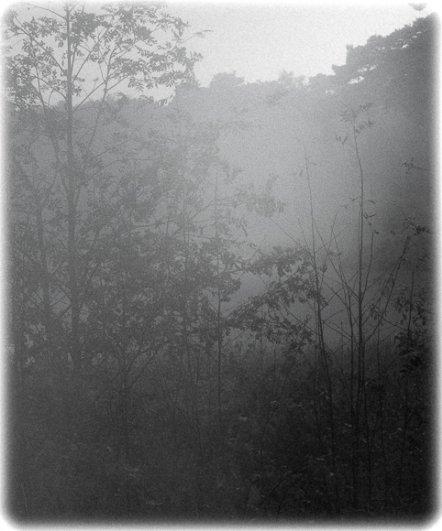 черно-белый пейзаж 18