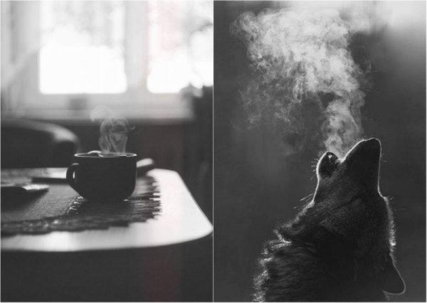 черно-белые фото работы 7