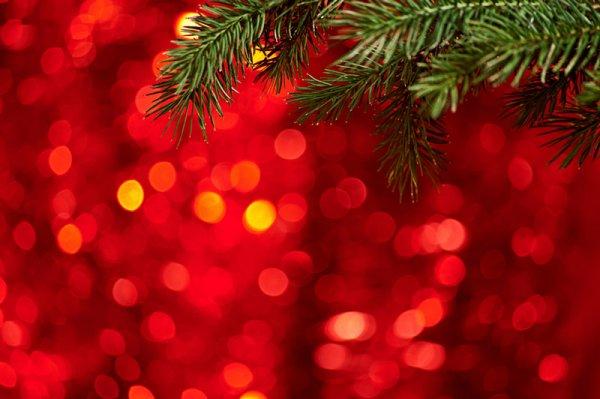 holiday-lights3